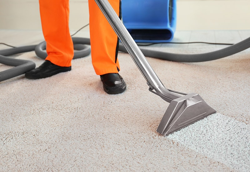 Carpet and upholstery cleaners - professional carpet cleaning Stirling